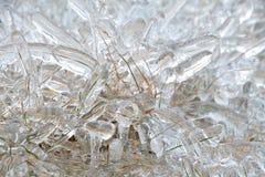 Hierba cubierta en hielo foto de archivo