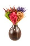 Hierba de cerda colorida en el tarro Foto de archivo libre de regalías