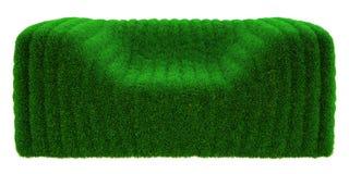 Hierba de la burbuja de la butaca Imagen de archivo libre de regalías