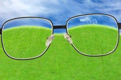 Hierba de la opinión de los vidrios y cielo azul Fotografía de archivo