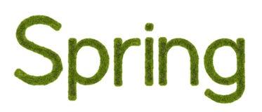 Hierba de la primavera Fotos de archivo libres de regalías
