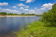 Hierba de la pureza de la naturaleza en la orilla del río foto de archivo libre de regalías
