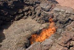 Hierba de Timanfaya que da vuelta en el fuego Imagen de archivo
