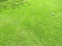 Hierba del corte del verde en primavera Fondo de la hierba verde del f?tbol o del campo de f?tbol foto de archivo libre de regalías