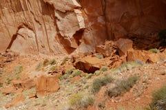 Hierba del desierto Imagenes de archivo