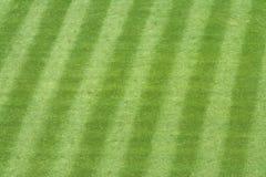 Hierba del estadio de béisbol fotos de archivo