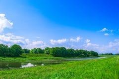 Hierba del paisaje y cielo azul Imagen de archivo