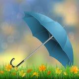 Hierba del paraguas y hojas caidas Foto de archivo