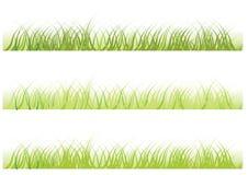 Hierba del vector Imagen de archivo libre de regalías