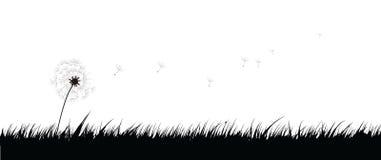 Hierba del vector Fotos de archivo