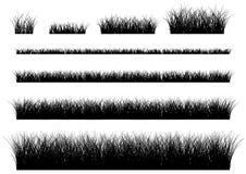 Hierba del vector en un fondo blanco Fotografía de archivo libre de regalías