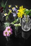 Hierba en botella Foto de archivo libre de regalías