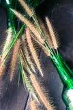 hierba en botellas de cristal verdes en el fondo de madera Imagen de archivo