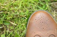 Hierba en sus pies Imagen de archivo libre de regalías