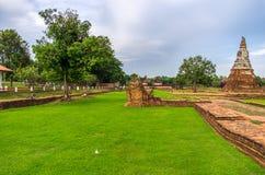 Hierba enorme verde en Wat Chaiwatthanaram en la ciudad de Ayutthaya Fotos de archivo