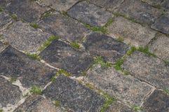Hierba entre las piedras grises Camino del ladrillo con la hierba y el musgo imagen de archivo libre de regalías