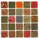 Hierba, especia, fruta y flora secadas Imagen de archivo libre de regalías