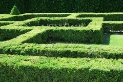 Hierba formada laberinto del arbusto Foto de archivo libre de regalías