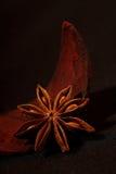 Hierba india - anís de estrella Imagenes de archivo