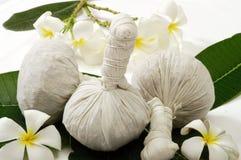 Hierba para el balneario del masaje Imagen de archivo
