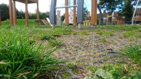 Hierba que crece a través del piso del patio imagen de archivo