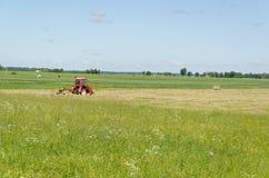 Hierba seca del tractor del heno rojo de ted en campo de la agricultura Imagenes de archivo