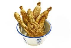Hierba tradicional 03 del Ginseng Imagen de archivo libre de regalías