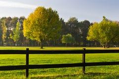 Hierba verde, árboles coloridos y una cerca de madera Fotografía de archivo