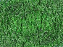 Hierba verde 7 Fotografía de archivo