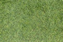 Hierba verde artificial imágenes de archivo libres de regalías