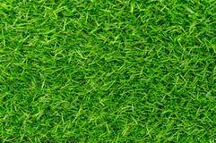 Hierba verde artificial para el fondo Fotografía de archivo libre de regalías