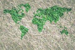 Hierba verde con forma del mapa del mundo rodeada con la hierba secada imagenes de archivo