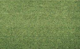 Hierba verde del fútbol del fútbol del golf de la yarda Fotos de archivo libres de regalías