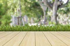 Hierba verde del resorte fresco Foto de archivo libre de regalías