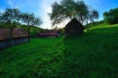 Hierba verde en el pueblo Imagenes de archivo