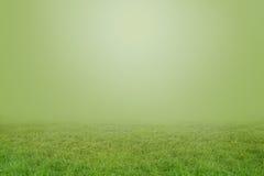 Hierba verde en parte inferior Fotos de archivo