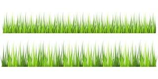 Hierba verde fresca realista, detallada estupenda del vector La planta aislada proviene para el ejemplo delantero de la naturalez stock de ilustración