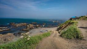 Hierba verde natural con la opinión del mar imágenes de archivo libres de regalías