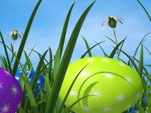Hierba verde y ambiente de los medios de los huevos de Pascua Foto de archivo