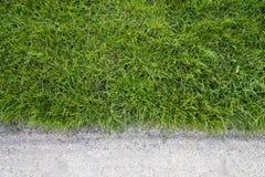 Hierba verde y arena Fotos de archivo libres de regalías
