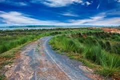 Hierba verde y camino con el cielo azul foto de archivo
