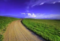 Hierba verde y camino de tierra Fotos de archivo