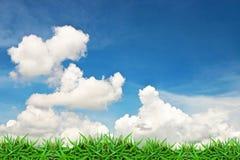 Hierba verde y cielo azul de la nube Imagenes de archivo