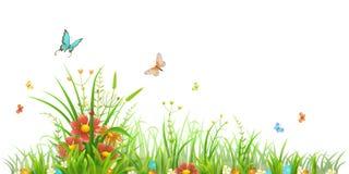Hierba verde y flores Fotos de archivo libres de regalías