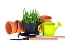 Hierba verde y utensilios de jardinería Imagen de archivo libre de regalías