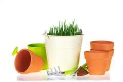 Hierba verde y utensilios de jardinería Fotografía de archivo