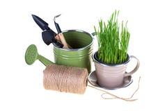 Hierba verde y utensilios de jardinería Imagenes de archivo
