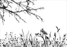 Hierba y árbol/silueta del vector