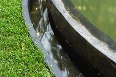 Hierba y agua Foto de archivo