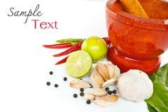 Hierba y alimento picante de los ingredientes Imagen de archivo libre de regalías